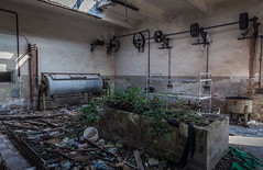 IMG_1683 (The Dying Light) Tags: hauntedisland povegliaisland urbanexplorationphotography urbanexploration urbanexploring 2017 abandoned asylum canon decay horror hospital italy poveglia urbex venice