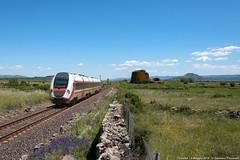 Primavera sarda (Damiano Piovanelli) Tags: treno treni trenitalia caf atr365 sardegna locomotiva ferrovie ferrovia ferroviedellostato diesel