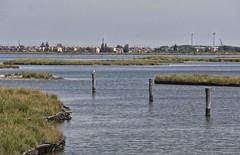 delta5 (28) (gca_66) Tags: delta po fiume