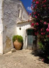 Oasi....per me!!! (dona(bluesea)) Tags: casa house campagna country fiori flowers marsala sicilia sicily
