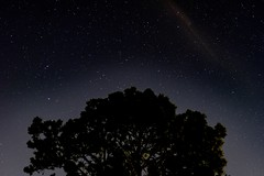 2684 (PhillipsVonNoog) Tags: astrophotography stars night sky stellar light pollution space