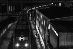 curva do trem (Bruno Nogueirão) Tags: street streetphotography streetphotographer streetphoto rua fotografiaderua fotografiadocumental cptm trem train pirituba zn pb pretoebranco blackandwhite bw d7200 nikon 85mm inexplore night