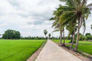 singburi - thailande 10