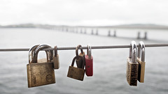 "Relationship status: ""It's complicated"" (M2160535 E-M1ii 14mm iso200 f2.8 1_800s) (Mel Stephens) Tags: 714mm mzuiko pro widescreen tay road bridge lock locks padlock padlocks water river tayside dundee scotland uk 20170716 201707 2017 q3 olympus omd em1ii ii m43 microfourthirds mirrorless best geotagged mft july very wide wallpaper screensaver"