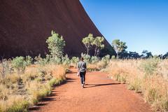 Uluru - Mutitjulu Waterhole-9
