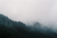 (Helena Costa.) Tags: serra da estrela portugal covilhã nevoeiro trees mountains fog nikon f65 fujfilm