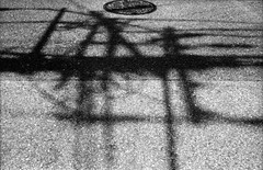 神経と血液 (nerve and blood) (Dinasty_Oomae) Tags: petri18 retri ペトリ ペトリ18 白黒写真 白黒 monochrome blackandwhite blackwhite bw outdoor 千葉県 船橋市 chiba funabashi 影 shadow 電線 utilitywire
