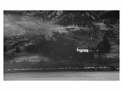 (bruXella & bruXellius) Tags: scotland ecosse schottland inverewegarden uk blackwhite blackandwhite bnw monochrome inverewe gardens