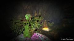 Faery Magic_014 (kristi Stevenson (KC Photography and Graphic Art S) Tags: secondlife secondlife:parcel=islesofperversion faery fairey fantasy wings edited photoscape maitreya rose