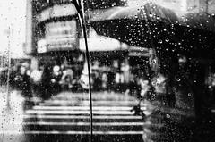 Raindrops (Meljoe San Diego) Tags: meljoesandiego ricoh ricohgr gr streetphotography street rain candid monochrome philippines