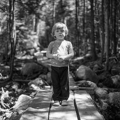 (patrickjoust) Tags: tlr twin lens reflex 120 6x6 medium format black white bw film blancetnoir blancoynegro schwarzundweiss manual focus analog mechanical patrick joust patrickjoust discontinued expired usa us united states north america estados unidos kid boy llewelyn woods forest trees path walkway jordan pond acadia national park mount mt desert island maine me new england