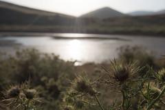 2451luglio17 (enzo1414) Tags: lagoracollo campo imperatore conca di prato del bove lago passaneta