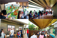 04 (樂活的大方) Tags: 20170724sb 新加坡動物園 river safari