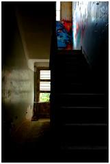 Chercher la lumière (Pascal.M (bong.13)) Tags: cave camargue couleurs urbex provence nikon d3200 abandonné ancien france bouchesdurhone