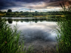 Looking Through (andystones64) Tags: gap cloud sky countryside bushes reeds weather scunthorpe nlincs lincolnshire water pond reserve nature bluelagoon