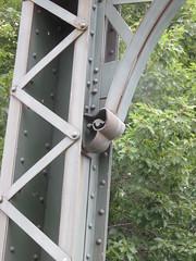 Pretty Little Detail On The Backside On The Bridge (amyboemig) Tags: highgate falls vermont 251 iron bridge victorian douglas jarvis patent parabolic truss douglasjarvispatentparabolictrussironbridge