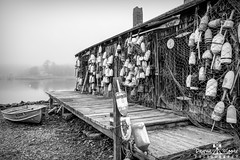 Foggy Day at the Lobster Pound (DawnaMoorePhotography) Tags: lobster lobstershack maine netting newengland photography york yorkbeach bw blackandwhite boat buoy capeneddick capeneddicklobsterpound closeup coastofmaine colorful dawnamoorephotography dawnamoorephotographycom detail fishing float floats fog foggy harbor hut image lobsterbuoy lobsterfloat lobsterpound lobstertrap lobstering lobsteringvillage mainecoast mainelobster mainelobsterpound marine me monochrome old photo photograph picture rowboat russellslobstershack shack touristattraction travel unitedstates usa village weathered us