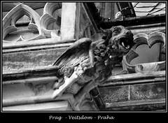 Gargoyles - 19 (fotomänni) Tags: prag prague praha gargoyles gargouille wasserspeier skulptur skulpturen veitsdom blackwhite schwarzweis noirblanc manfredweis