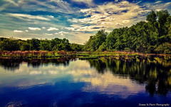 That Time That You Were There and I Was Here.... (Donna St.Pierre) Tags: lincoln rhodeisland usa landscapes photography newengland newenglandphotography summer summer2017 river blackstoneriver green trees weather daylight outdoors sunny hot humid