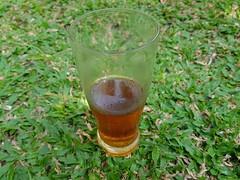 fresh ice tea (ahmadassegaf) Tags: fresh ice tea cup half empty garden grass green brown s8