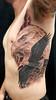 ALEX EAGLE (Elijah Pashby) Tags: eagle bird tattoos tattoo man mens nature flightflying elijahpashby