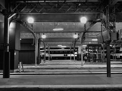 Union Station, Toronto, Ontario (duaneschermerhorn) Tags: station train trainstation lights tracks night black white blackandwhite blackwhite bw noire noir blanc blanco schwartz weiss