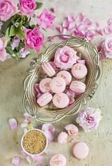 macaroons (olimpia davies) Tags: desserts pink macaroons food foodphotography foodstyling foodphotographer foodstylist foodart foodlovers family foodgasm flowers