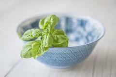Fresh Basil (jm atkinson) Tags: bokehwednesday 7dwfmacro bluebowl basil silllife 60mm d700 joanmatkinson
