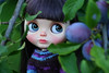 Willow in the garden (zsofianyu) Tags: takara tomy neo blythe doll lady camellia custom ooak unique art japanese toy artistry faceup cute girl blue eyes eyechips eye chips outdoor garden portrait closeup handmade clothes dress sweater etsy shop seller summer sale freckles sweet zsofianyu fa for adoption