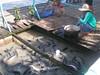 200707 301 (bentchristensen14) Tags: cambodia siemreapriver tonlesap sangkatchongkhnies people