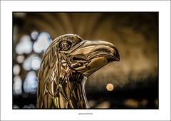 Brass eagle (G. Postlethwaite esq.) Tags: dof devon exetercathedral sonya7mkii sonyalphadslr beyondbokeh bokeh brass depthoffield eagle fullframe mirrorless photoborder selectivefocus