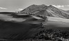 shifting sands... (Alvin Harp) Tags: sanddunes winnemucca nevada sonynex5r e55210mm february 2014 tumbleweeds barbwirefence mountaintops monochrome bwlandscape bw blackandwhite natureswonder alvinharp