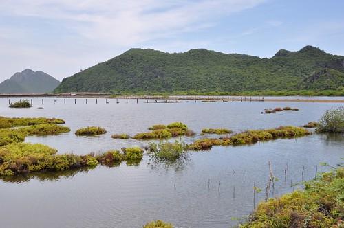 parc national sam roi yot - thailande 33