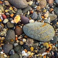Mystery Bay Rocks (caralan393) Tags: phone square beach roicks texture mysterybay coast