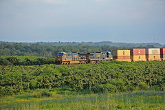Q008 in Vineyard Country (craigsanders429) Tags: csx csxtrains csxeriewestsubdivision csxlocomotives csxmotivepower csx3328 csx49 vineyards northeastpennsylvania stacktrains csxstacktrains latedaylighting latedaylightphotographs