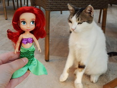 Ari and turkish cats (Lindi Dragon) Tags: doll disney disneyprincess disneystore dolls ariel mermaid little turkey