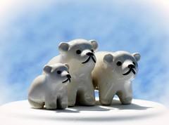 Polar Bear Miniatures * three* macro monday HMM (expl.) (BrigitteE1) Tags: polarbearminiatures macromondays three hmm eisbärenminiaturen porcelain porzellan mini explored inexplore onexplore