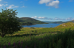 Loch Doon (cmax211) Tags: infocus highquality loch doon ayrshire scotland