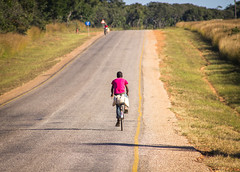 Forests, food security and nutrition in Luwingu (CIFOR) Tags: people livelihoods bicycle road infrastructure human humanbeing humanbeings humans person luwingu northern zambia zm communityforestry