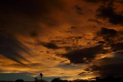 Sunset 7 19 2017 #07 (Az Skies Photography) Tags: sunset sun set dusk twilight nightfall sky skyline skyscape skyfire skycandy rio rico arizona az riorico rioricoaz arizonasky arizonaskyline arizonaskyscape arizonasunset arizonaskycandy canon eos 80d canoneos80d eos80d july 19 2017 july192017 71917 7192017
