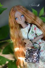 IMG_8247 (Cleo6666) Tags: lana lillycat cerisedolls marron glacé bjd doll chibbi