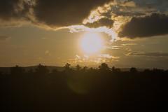 Izzy-1825 (CampSkylemar) Tags: 2017 visitorsday sceniclandscape