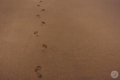 Barrika (jdelrivero) Tags: provincia mar geologia arena playa elementos costa lugares olas bizkaia barrika españa rocas geology beach elements places sea spain elexalde euskadi es