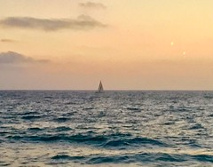 Sunset Sailing in Santa Monica Bay. (carpathiar) Tags: losangeles socal southerncalifornia california oceanview thecharthouse sunset pacificocean santamonicabay sailboat redondobeach