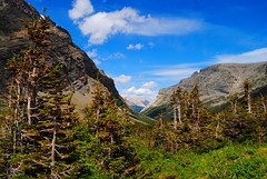 trail views (ekelly80) Tags: montana glaciernationalpark nationalparkservice nps june2017 roadtrip keisgoesusa optoutside findyourpark mountains rockymountains hike trail crackerlaketrail manyglacier view scenery green grass fields trees sky clouds