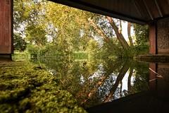 The #boathouse on the grounds on #arasanuachtarain #phoenixpark #thephoenixpark #phoenixparkdublin #reflection #private #pond #michaeld #michaeldhiggins  #presidentofireland #ig_ireland #igersireland #igireland #picoftheday #instaireland #irishpassion #lo (johncahalin) Tags: nikon phoenixparkdublin pond sigma10to20 picoftheday arasanuachtarain michaeld thephoenixpark instaireland phoenixpark igireland michaeldhiggins presidentofireland igersireland private nikond3400 lovindublin irishpassion boathouse reflection