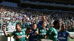 Palmeiras x Vitória (16/07/2017) (sepalmeiras) Tags: allianzparque campeonatobrasileiro palmeiras sep sériea vitória palmeirasxvitoria16072017