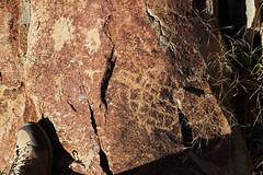 DSC07255 - NAMIBIA 2017 (HerryB) Tags: 2017 southafrica afrique afrika namibia namib südwest sonyalpha77 sonyalpha99 tamron alpha sony bechen heribert heribertbechen fotos photos photography herryb san bushmen buschmänner gravuren carvings engravings giraffe giraf zebra vandalisme vandalisiert peetalbertskoppie oppikoppi peetalbertskoppi ritzungen felsgravoren rockengravings kamanjab