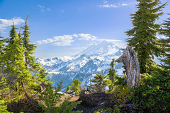 Baker (csquags) Tags: mtbaker artistpoint mountain nature trees snow nationalpark findyourpark pnw washington