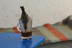 Drôle d'oiseau... (Pi-F) Tags: oiseau verre thé pignon boire boisson tunisie tasse bleu table terrasse sidibousaïd tunis transparence humour